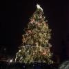 Muzeum a Vánoční strom Praha 29.11.2014